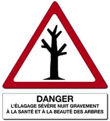 elagage_severe